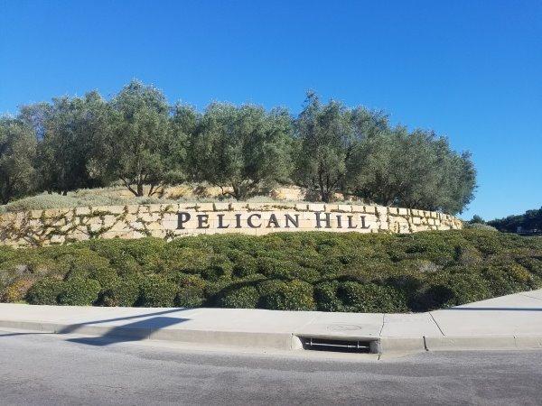 Pelican Newport Coast